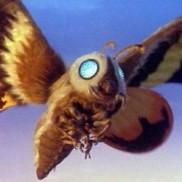 Godzilla Mothra 4